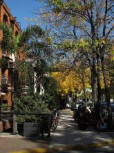 Herbst in Buenos Aires